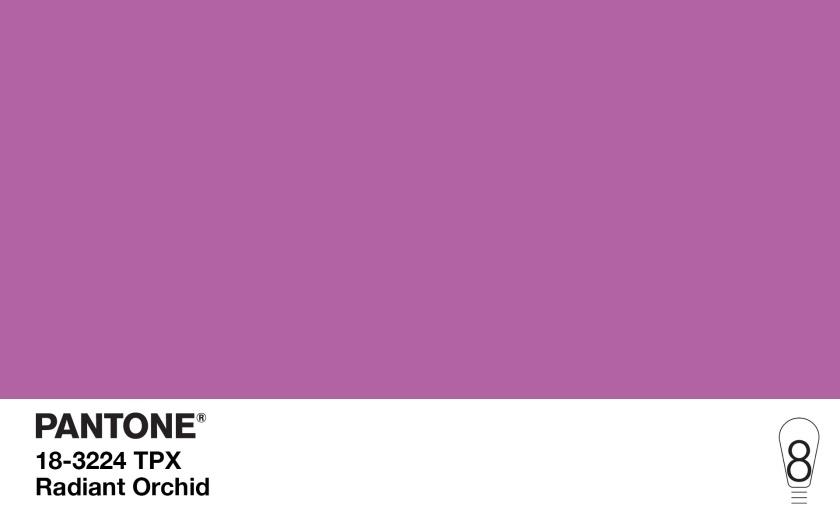 As oito cores do ano desta década - Cultura de Algibeira