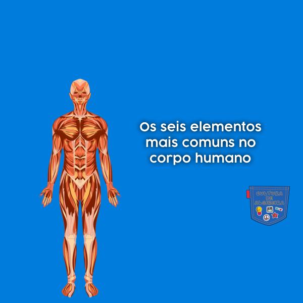 seis elementos mais comuns corpo humano Cultura de Algibeira