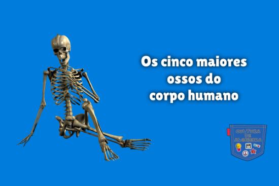 Os cinco maiores ossos do corpo humano Cultura de Algibeira