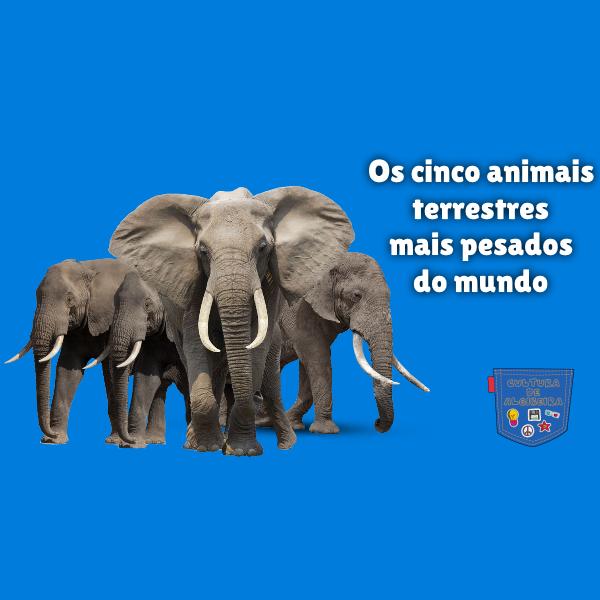 cinco animais terrestres mais pesados mundo Cultura de Algibeira