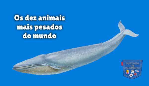 Os dez animais mais pesados do mundo Cultura de Algibeira