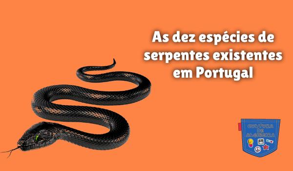 dez espécies serpentes existentes Portugal Cultura de Algibeira