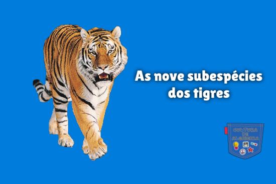 As nove subespécies dos tigres Cultura de Algibeira