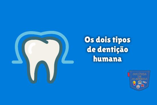 Os dois tipos de dentição humana Cultura de Algibeira