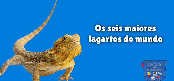 Os seis maiores lagartos do mundo Cultura de Algibeira