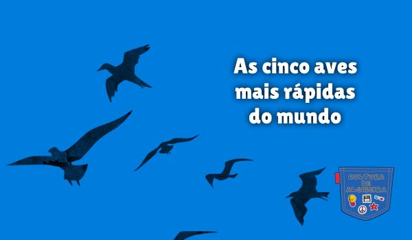 As cinco aves mais rápidas do mundo Cultura de Algibeira