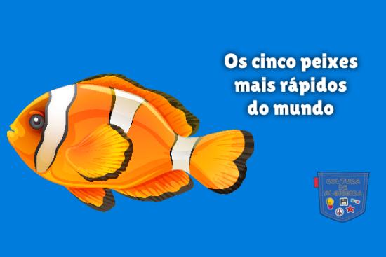 Os cinco peixes mais rápidos do mundo Cultura de Algibeira