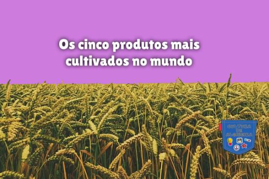 Os cinco produtos mais cultivados no mundo Cultura de Algibeira