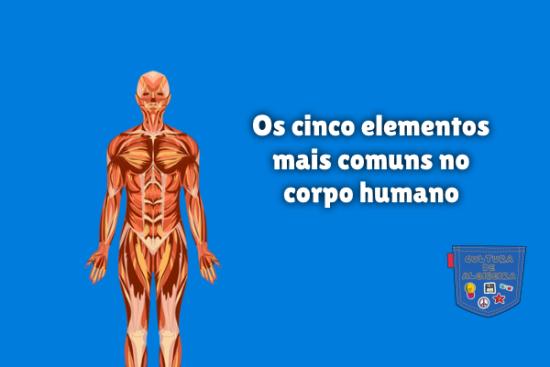cinco elementos mais comuns no corpo humano Cultura de Algibeira
